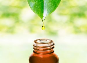 Essential Oil Holistic Options for Medicine Cabinet