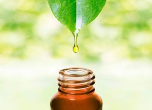 Introduction to Organic Virgin Plant Oils