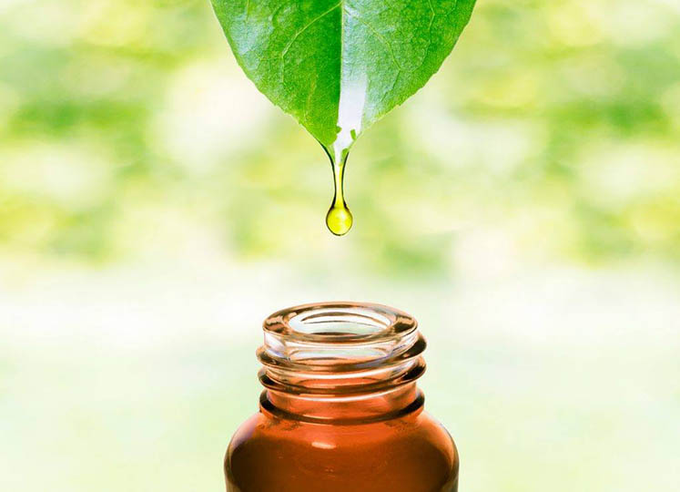 The Top 10 Essential Oils Everyone Should Have