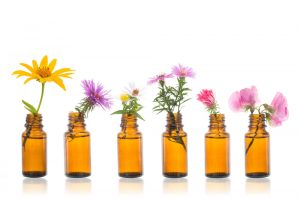 Essential Oils: Exploring the Florals